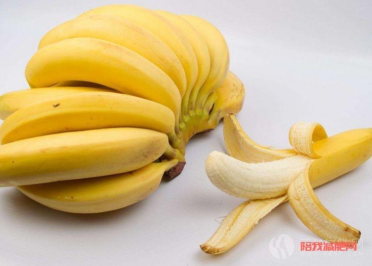 夏季吃香蕉有助于减肥
