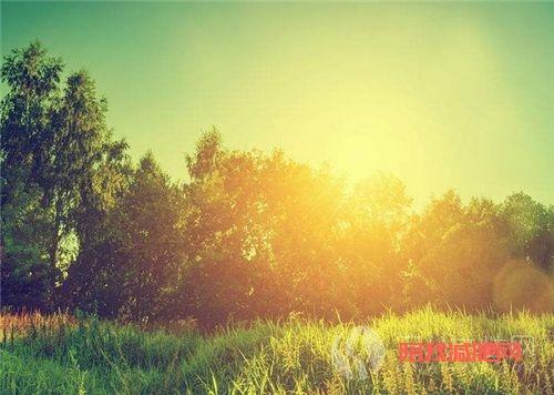 春季如何快速减肥 春季减肥有什么好处5.png